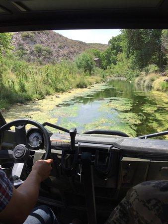 Cibolo Creek Ranch: photo6.jpg