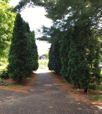 Munsinger Gardens 사진