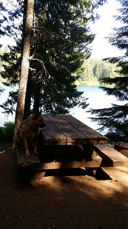 clear lake resort campground reviews sisters oregon tripadvisor