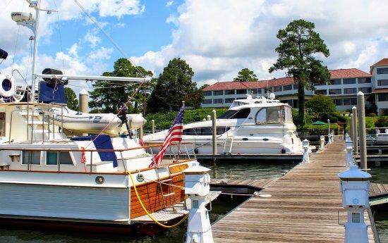Irvington, VA: looking back from the marina..
