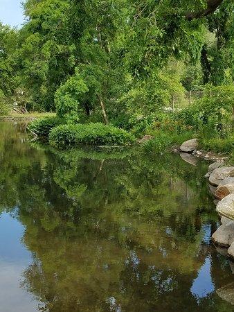 Wellfield Botanic Gardens - Riverside - Picture of Wellfield Botanic ...