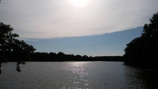 Fayette-billede