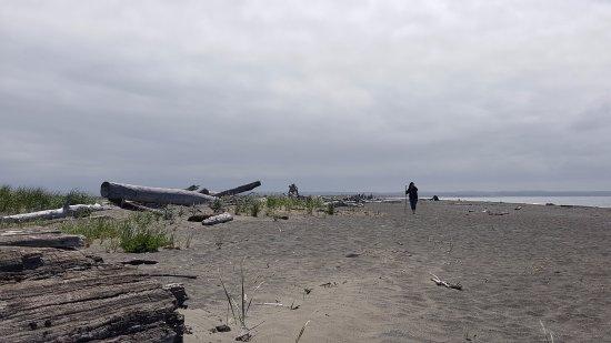 Damon Point: Ocean side beach.