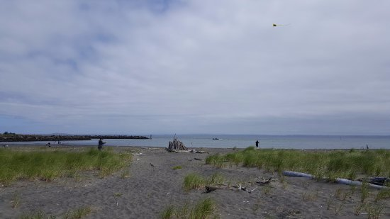 Damon Point: Bay side beach.