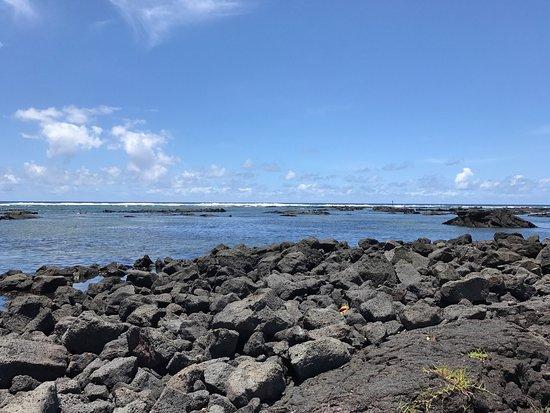 Pahoa, Hawái: photo3.jpg