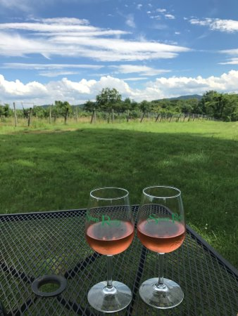 Sperryville, VA: Enjoying some rose at Sharp Rock vineyards--lots of great spots to sit & relax.