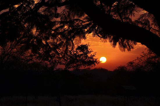 Gravelotte, Sudáfrica: View of sunrise from Askari Volunteer House