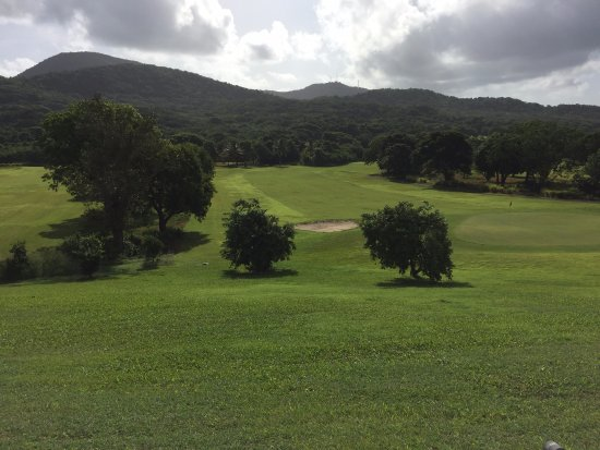 Carambola Golf Club: Golf Course from Clubhouse