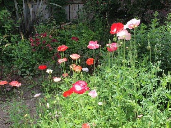 Cold Spring, NY: Stonecrop Gardens