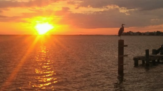Dauphin Island Harbor House: Sunset at harbor house