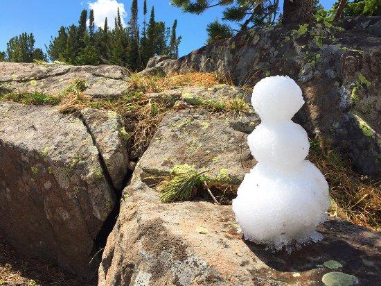 McLeod, MT: Snowman in July.