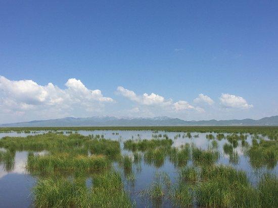 Zoige County, China: 花湖景致。