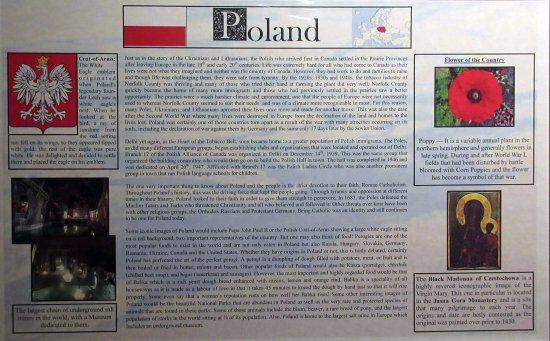Delhi, Канада: Many inhabitants of the are came from Poland