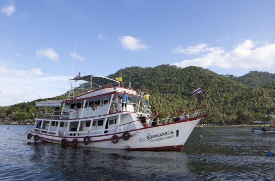 3-Day Open Water Course at Koh Tao...