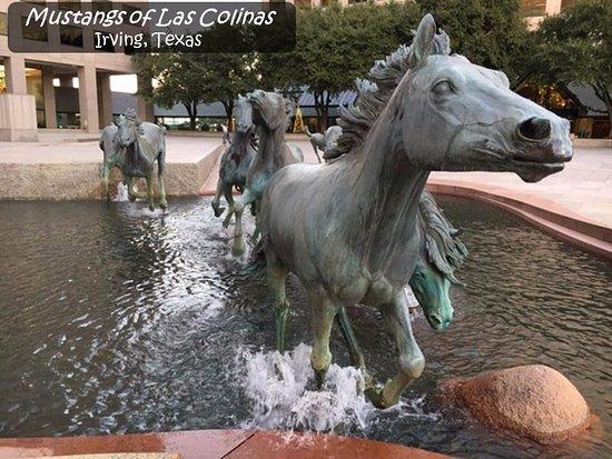 The Mustangs of Las Colinas in Irving Texas - metro Dallas