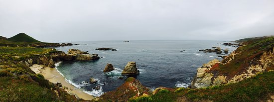 Big Sur Tours and More : I'm already missing the beautiful scenes and the cool weather!