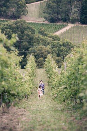 Adelaide Hills, Austrália: Patrick and Anji Henschke in our vineyard