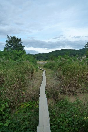 Yeongju, South Korea: 영주무섬마을