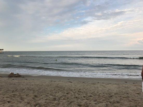 Virginia Beach: photo5.jpg