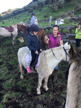 Waiheke-øya, New Zealand: Amazing Family Experience!!!