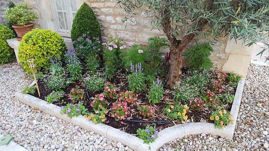 Anglars-Juillac, France: Jardin fleuri