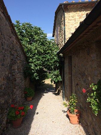 Montieri, İtalya: photo6.jpg