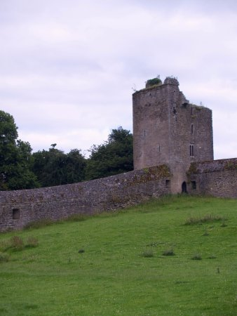 "County Kilkenny, Ireland: one of the ""castles"" at Kells priory"