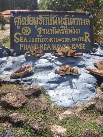 Sign - Picture of Royal Thai Navy Third Fleet Turtle Nursery, Khao Lak - Trip...