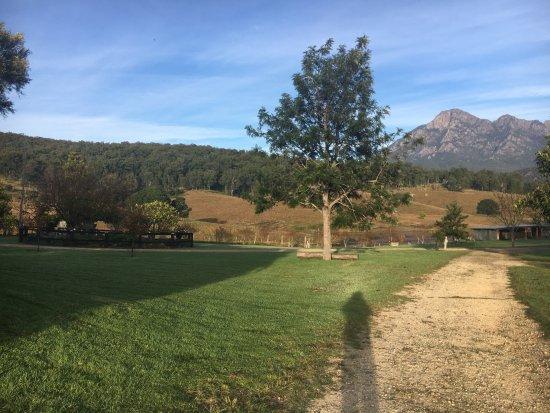 Lilydale Farmstay