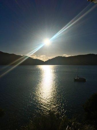Arthurs Bay, Nouvelle-Zélande : photo4.jpg