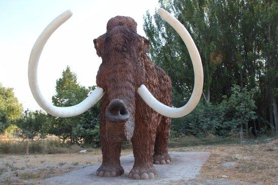 Padul, Испания: mamut