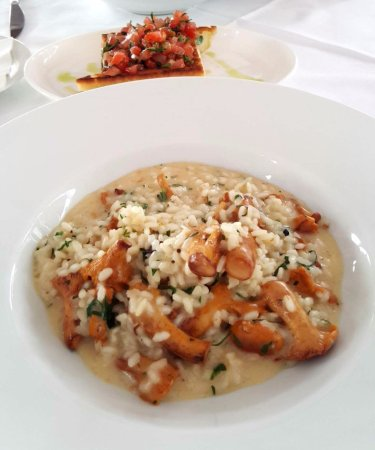 Blaue Gans: Risotto with Eierschwammerl