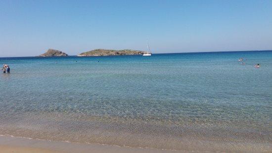 Poseidonia, Griekenland: Αγκαθωπες Συρου