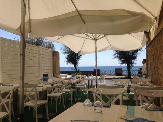 Calamarea Pozzuoli Menu Prices Restaurant Reviews