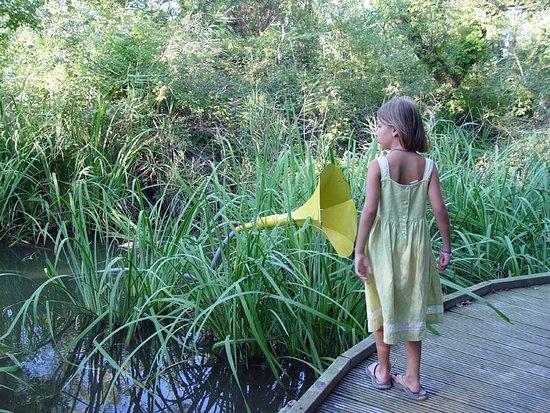 Les Marais du Vigueirat : le sentier des Cabanes