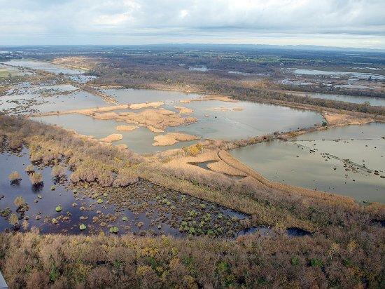 Les Marais du Vigueirat