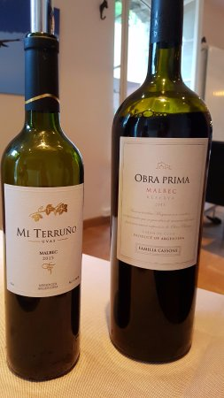 Variedad de vinos malbec