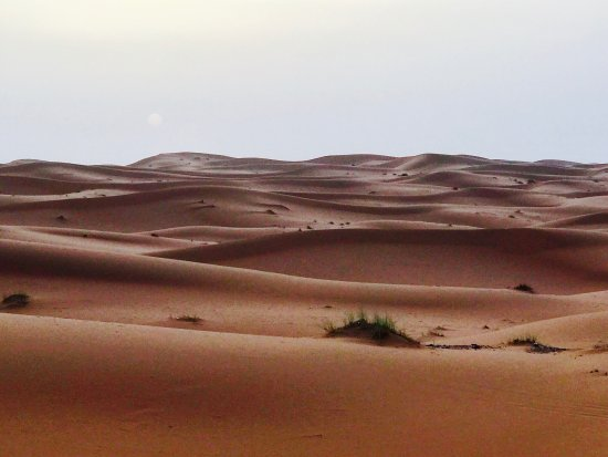Erg Chebbi Tours: photo3.jpg
