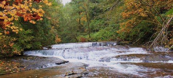 Mapleton, OR: Sweet Creek Falls Oregon in October