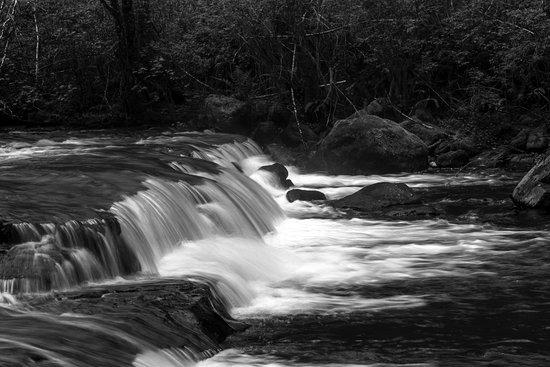 Mapleton, OR: Sweet Creek Falls Oregon in Black & White