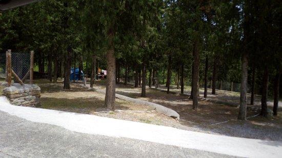 Morillo de Tou, Spain: Zona de acampada