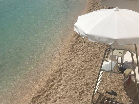 Amazing pool, good beach, particular clientele