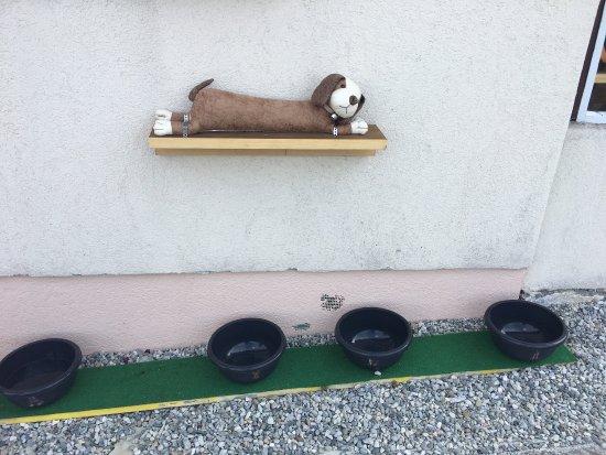 Bürchen, Ελβετία: Tolle Terasse, Ladestation fuer E-Bikes und auch Hunde sind willkomnen