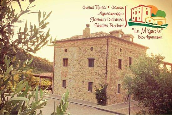 Orsogna, Italy: cartolina di presentazione