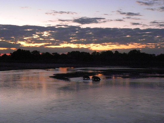 North Luangwa National Park-bild