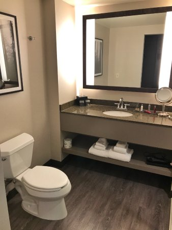 Toilet and hand basin. - Picture of Seattle Marriott Redmond ...