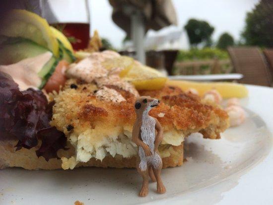 Jelling, Дания: Vores medbragte surikat var heller ikke imponeret.
