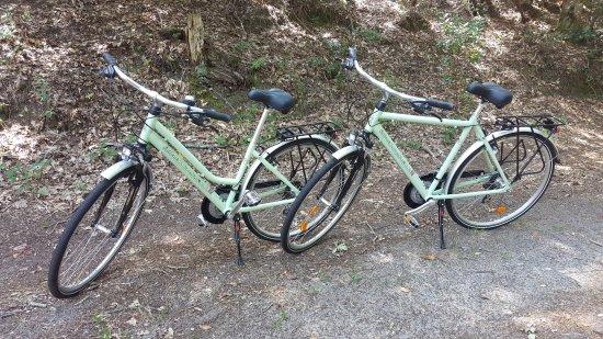 Maubuisson, France: Bikes
