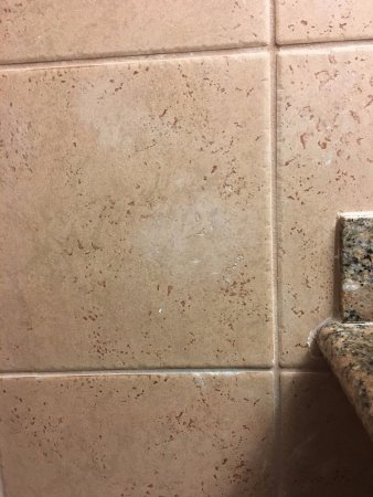 Sterling Heights, MI: White paint droppings or smears were visible all over bathroom