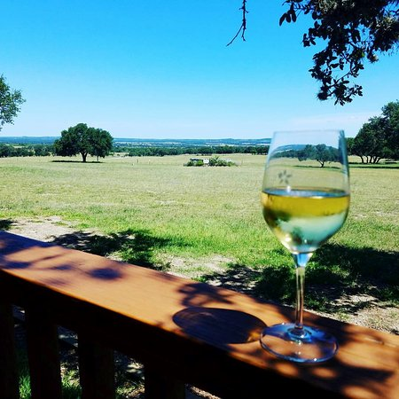 Stonewall, TX: Wine and beautiful views under the beautiful oak trees